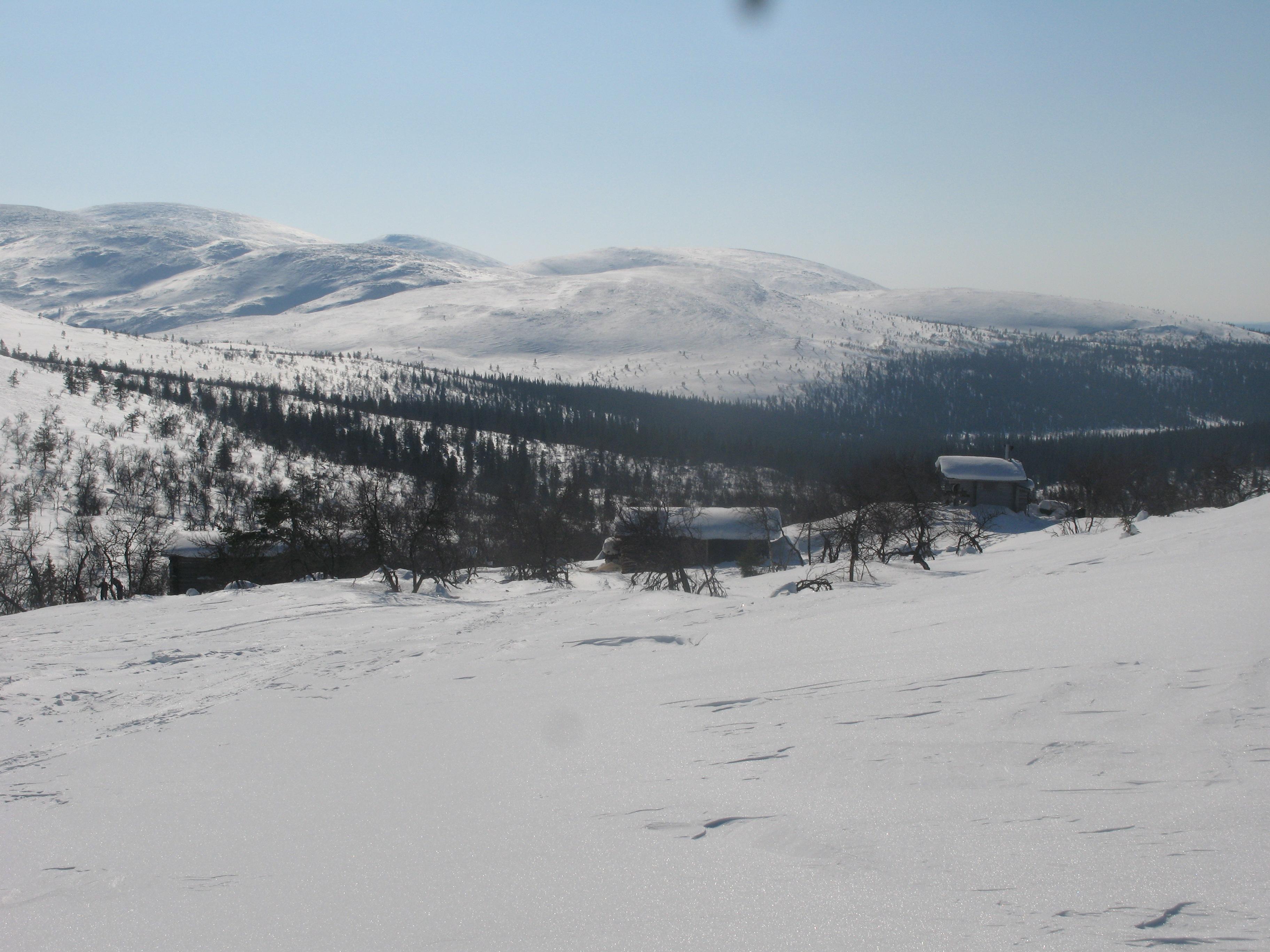 hyypän hiihto 2016